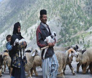 Iran nomad family