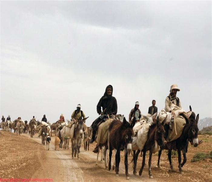 Iran nomad tribe